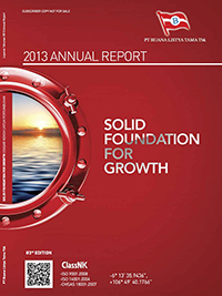 SOLID FOUNFATION FOR GROWTH (2013)